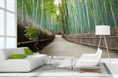 Home & Office wall mural decal forest scene