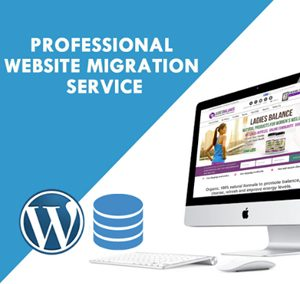Website-Migration